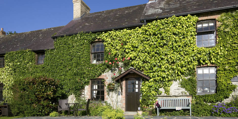 Ivy Cottages Romantic 5 Star Luxury One Bedroom Cottage