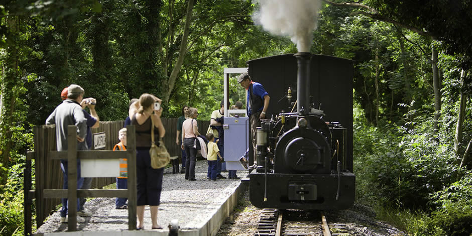 The Teifi Valley Railway