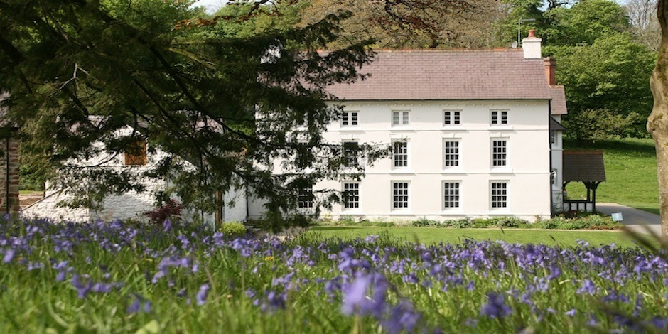 The Grove – lovely grounds with Bluebells